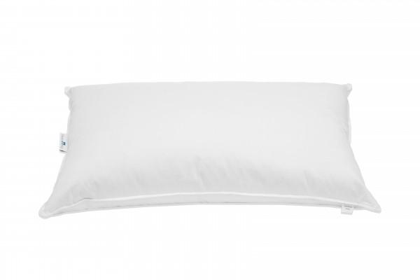 Down pillow President